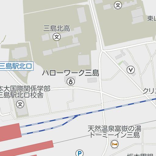 国際 学部 大学 日本 関係