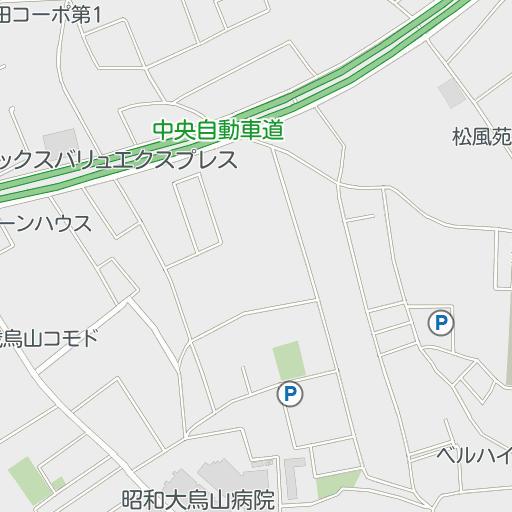 昭和 大学 病院 駐 車場